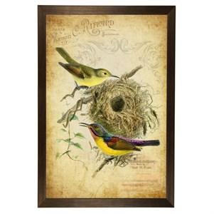 """Постер в раме """"Экзотические птицы"""" 33х43 см"""