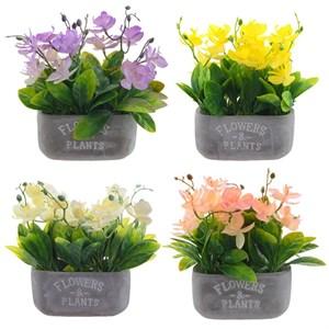 Орхидея в кашпо, цена за штуку